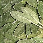 Sage Essential Oil (Dalmatia)